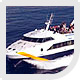 Reserve ferry ticket Ibiza to Formentera.
