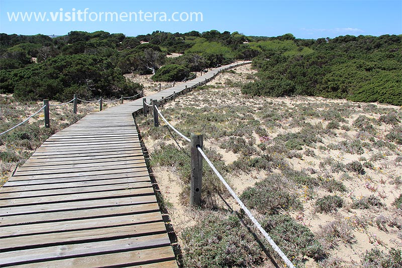 Cheap Rentals Formentera. Formentera reservations. Formentera Rentals. Formentera Offers. Ferries, Hotels, Apartments, Houses, Cars, Motorcycles, Scooters, Formentera Boats. Visitformentera.com tourism guide, offers and reservations on the island of Formentera. Balearic Islands.